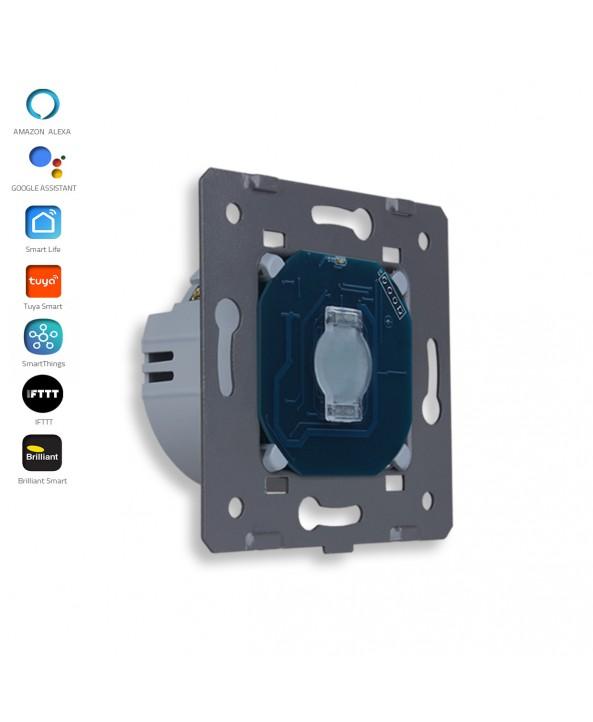 1 Gang - 1 Way - Module / Smart WiFi
