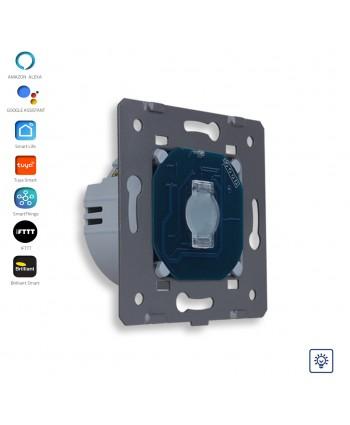 Dimmer Switch - Module / Smart WiFi